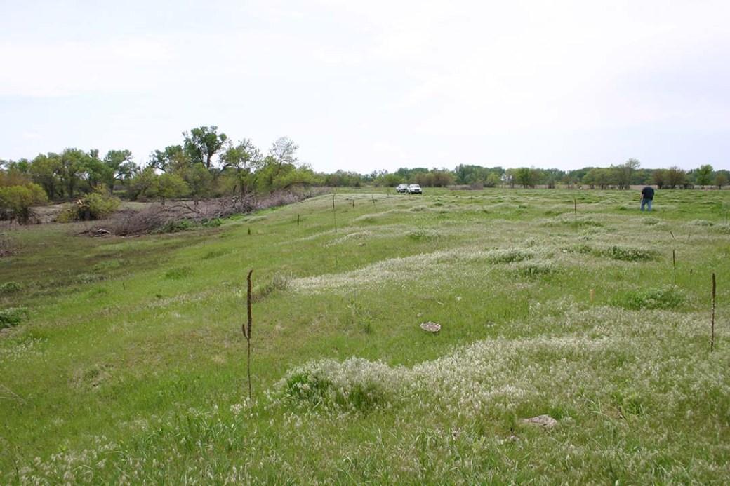 Nebraska Archeology Site 25SW49, Beaver Crossing